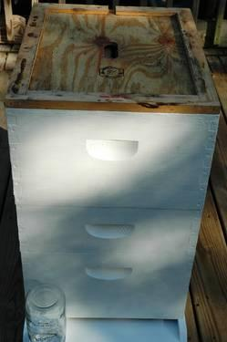 HONEY BEE HIVES 150.00 EACH
