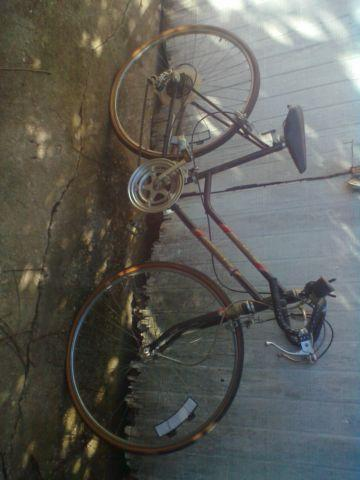 BIKE 12 SPEED 26