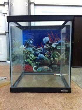 22 Gallon Fish Tank with Stand all accessories included just add fish