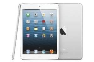iPad 2 Wifi/3G, 16GB with Great Case/Stand and Stylus NEW CONDITION