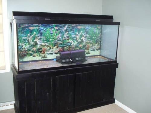 125 gallon aquarium w wooden stand everything you need to for 125 gallon fish tank