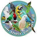 Will Take In Your Unwanted Exotic Birds, Privately Owned...SAFE HAVEN.
