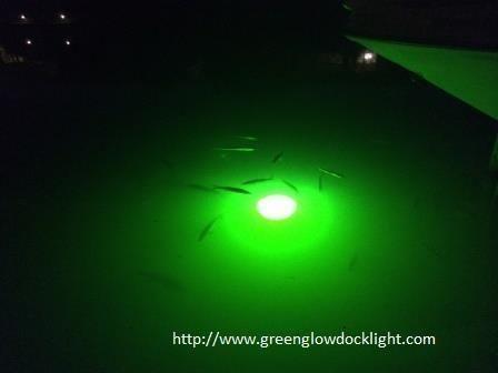 Green Glow Dock Light, Underwater Fish Lights, underwater dock light