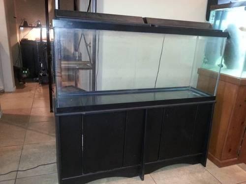 55 gallon aquarium for sale for sale in winchester for 200 gallon fish tank for sale