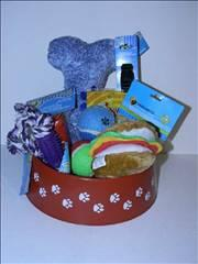 Cat/ Kitten Gift Basket