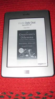 Basic Kindle with leather case